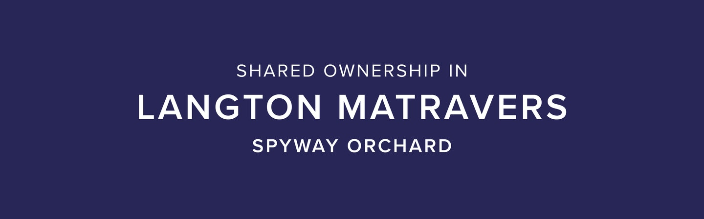Spyway Orchard, Langton Matravers