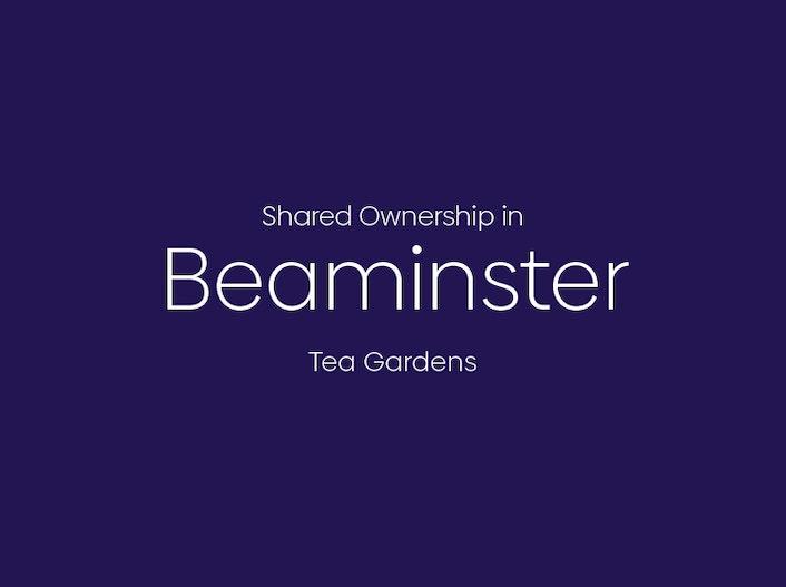 Tea Gardens, Beaminster
