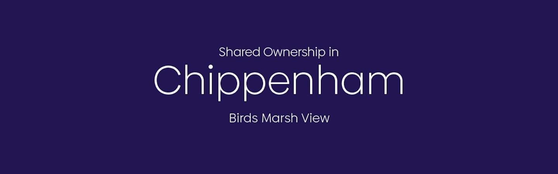 Birds Marsh view